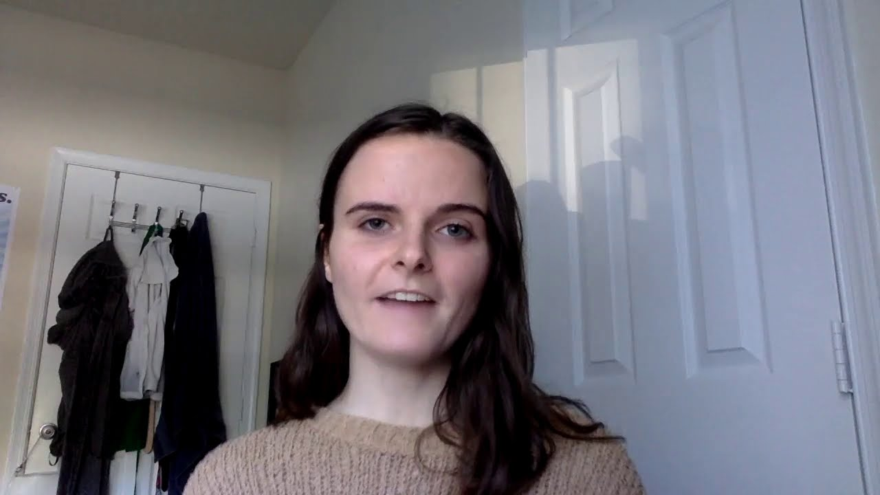 an elevator talk about the project by Hannah McCarthy